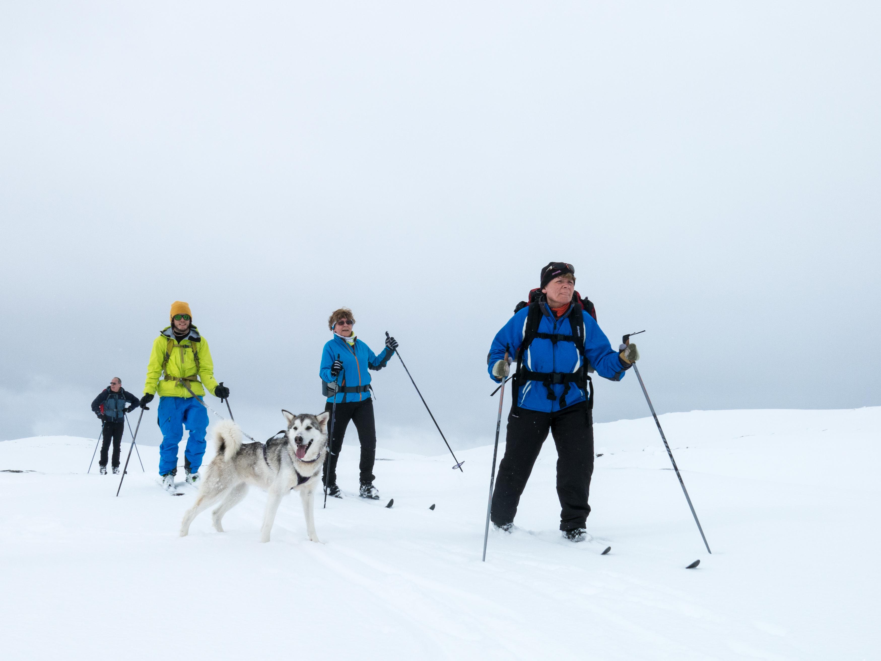 Ski(t)tur i Myrefjellet