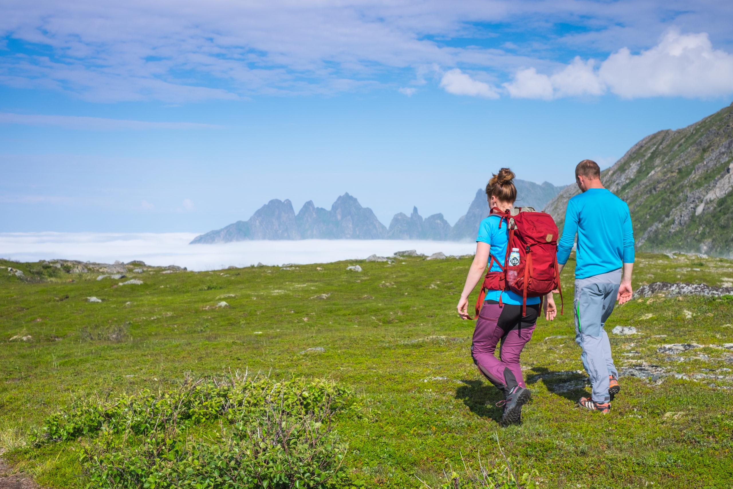 Steinsethøgda 473 moh